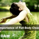 importance-of-full-body-cleansing