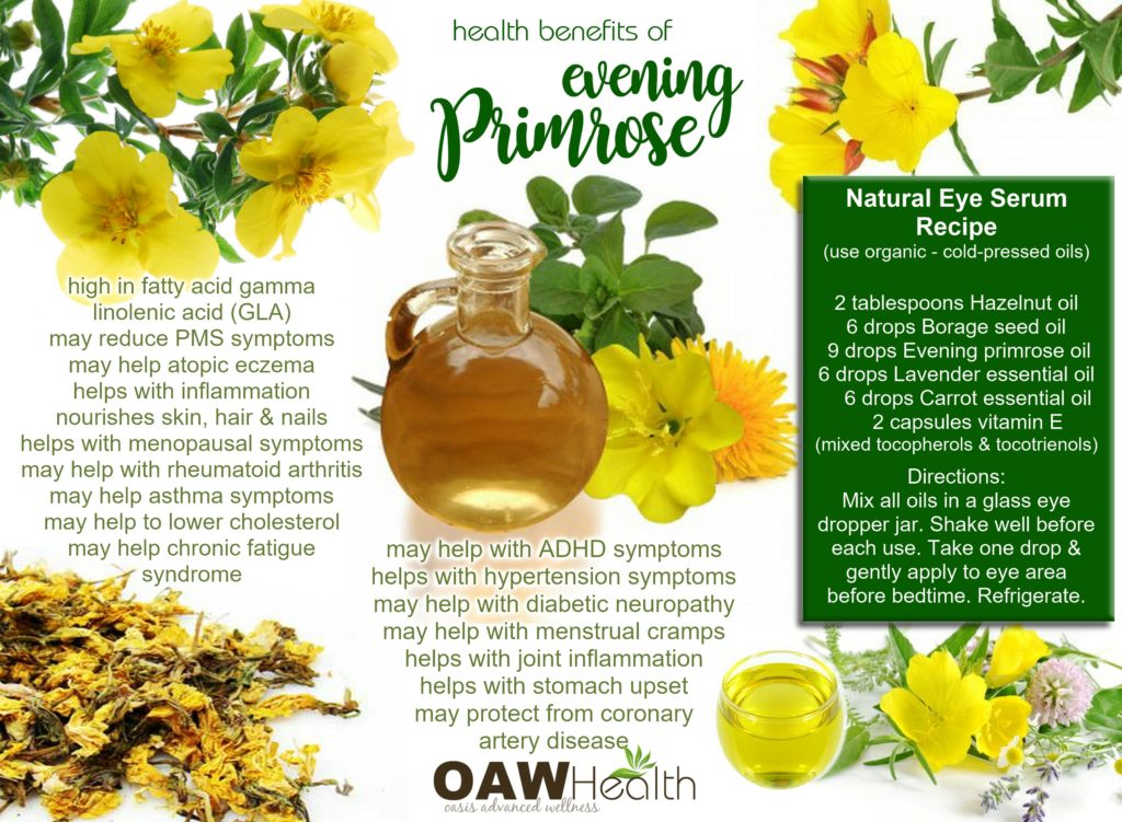evening primrose health benefits