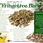 benefits of fringe tree bark