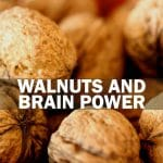 walnuts and brain power