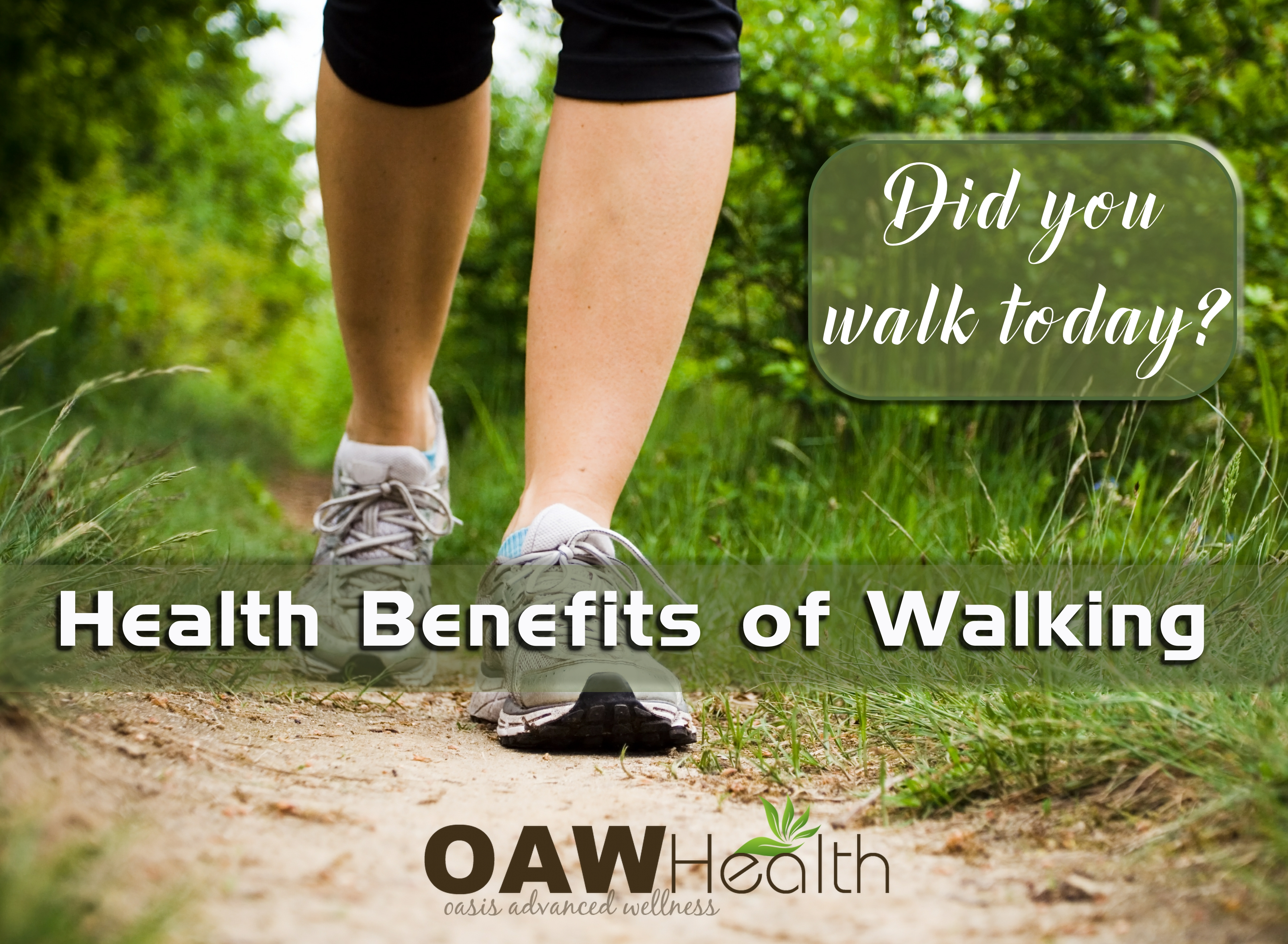 Health Benefits of Daily Walking