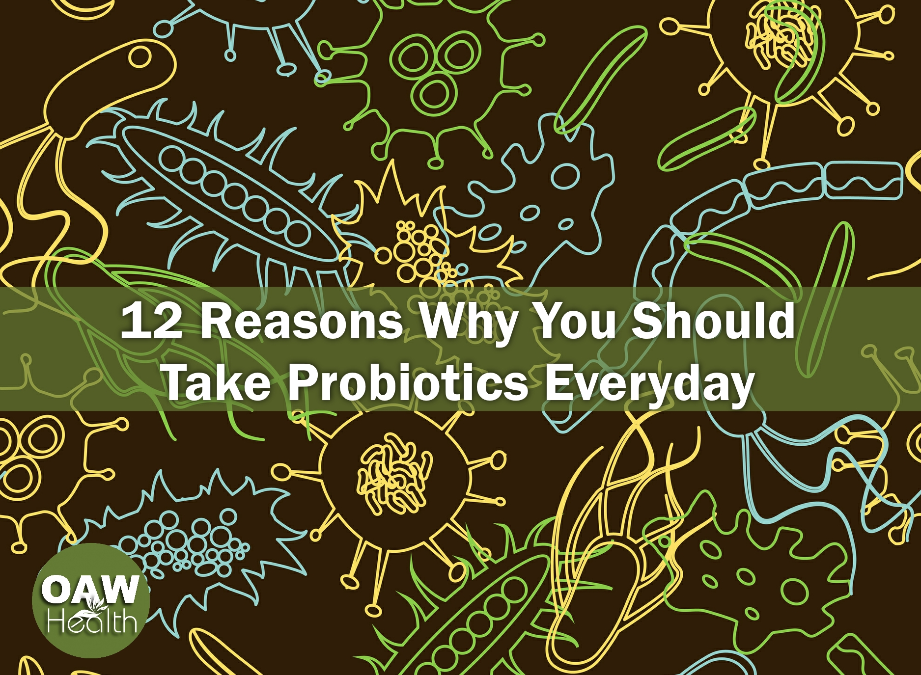 12 Reasons Why You Should Take Probiotics Everyday