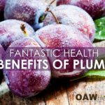 Fantastic Health Benefits of Plums