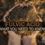 fulvic acid what you need to know