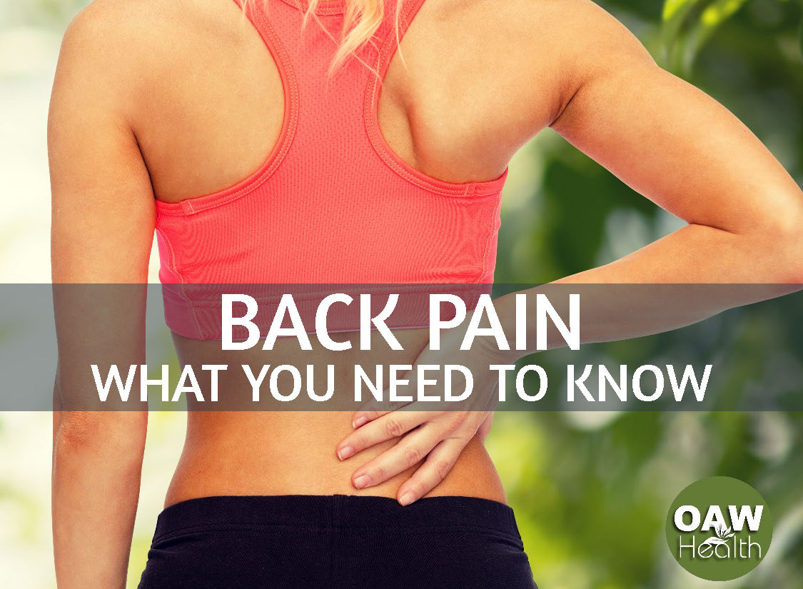 Back Pain Relief – What You Need to Know